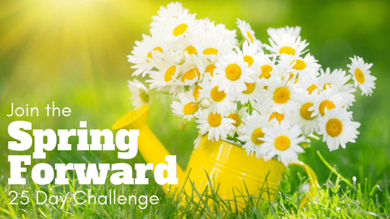 daisies in flower can spring forward challenge