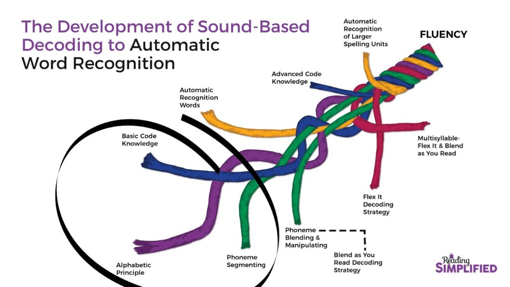 Development of Sound-Based Decoding to Automatic Word Recognition with Basic Code Knowledge, Alphabetic Principle, and Phoneme Segementing circled to highlight subskills covered in the Build It activity.