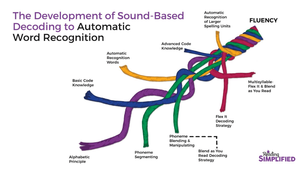 Reading Simplified's Development of Sound-Based Decoding to Automatic Word Recognition. A strand of these subskills braided together: Alphabetic Principle, Basic Code Knowledge, Phoneme Segmenting, Automatic Recognition of Words, Phoneme Blending & Manipulating (using the Blend As You Read Decoding Strategy), Advanced Code Knowledge, Flex It Decoding Strategy, Automatic Recognition of Larger Spelling Units, Multisyllable-Flex It & Blend as You Read working together to achieve fluency as the complete rope.